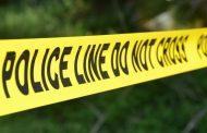 ქუთაისში ძარცვის მცდელობაზე პოლიციამ ორი პირი დააკავა