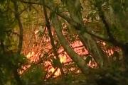ბორჯომის ხეობაში ცეცხლის ახალი კერები კვლავ გააქტიურდა (ვიდეო)
