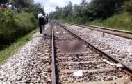 სელფის გადაღების დროს 3 სტუდენტი მატარებელმა გაიტანა (ვიდეო)